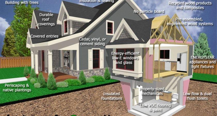 Anatomy Green Home