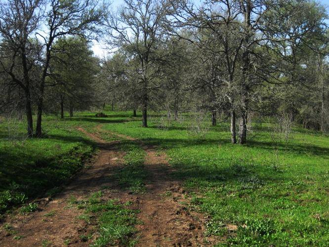 Archived Land Near Acres Burleson County North