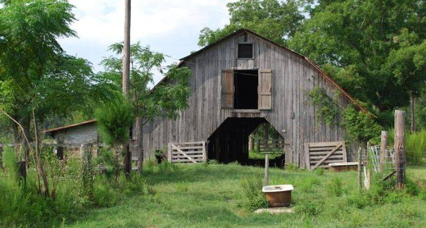 Archived Land Near Jesup Georgia Acreage House Sale