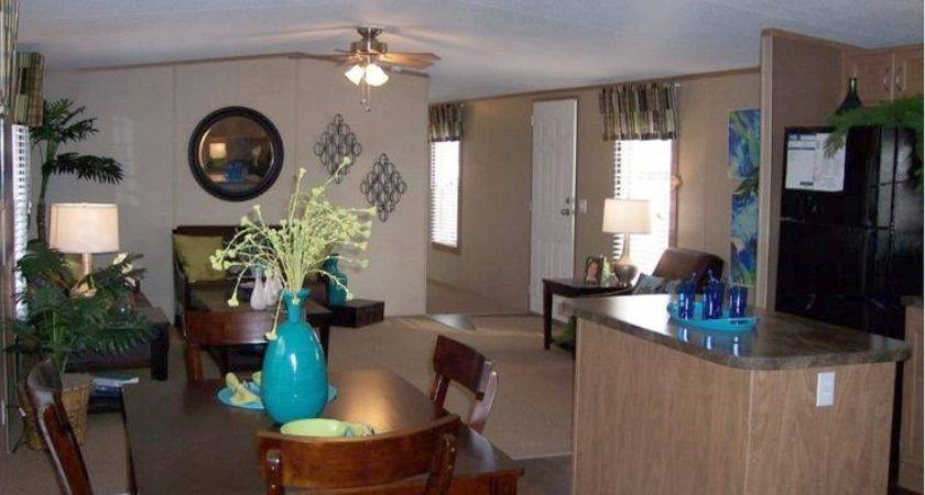 Awesome Mobile Home Decorating Ideas Modern Single Wide