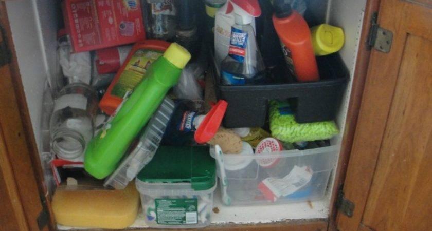 Before Cabinet Under Kitchen Sink