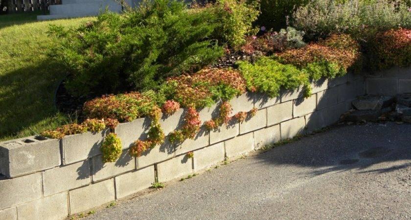 Build Cinder Block Retaining Wall Incoming Bytesincoming