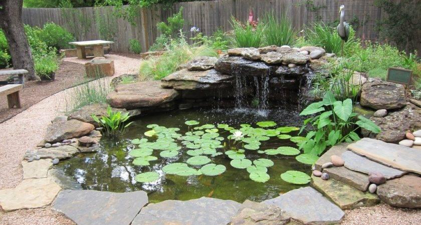 Build Pond Diy Water Garden Supplies Costs Fun Times