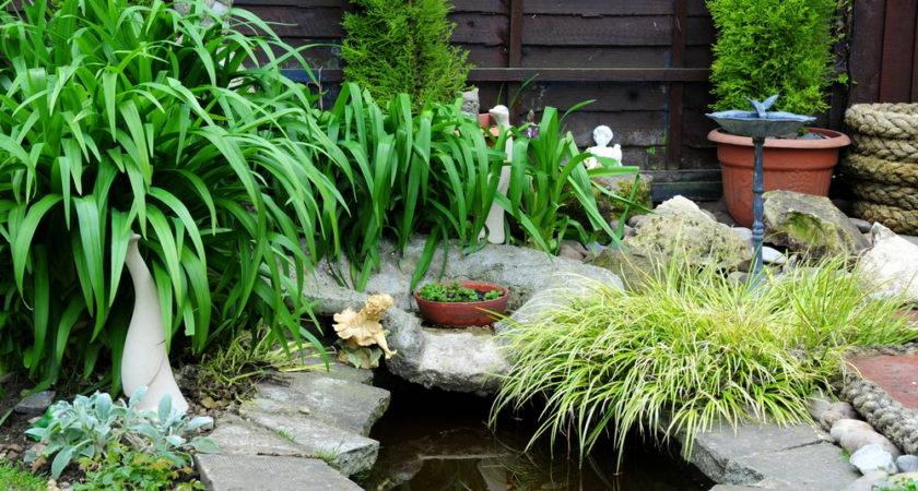Build Your Very Own Water Feature Garden Buco Blog