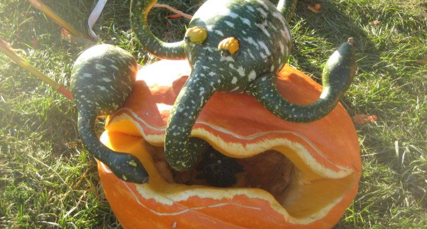 Check Out Some These Cool Pumpkin Creations Years Past