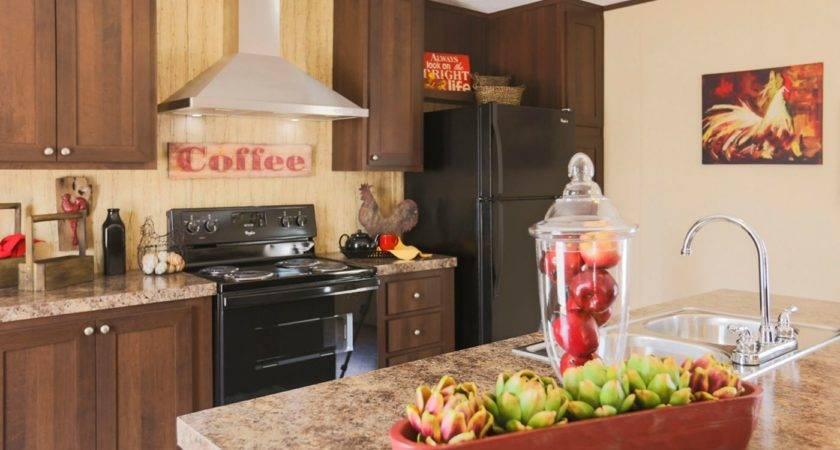 Clayton Homes Roanoke Homemade Ftempo
