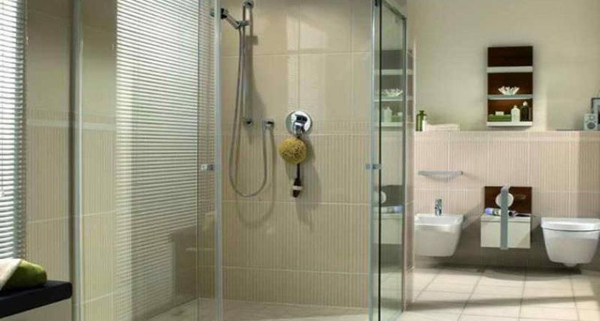 Cleaning Glass Shower Doors Ideas
