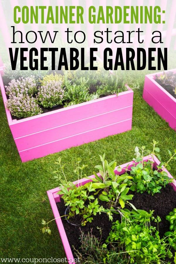 Container Gardening Start Vegetable Garden