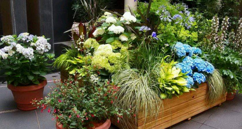 Designs Latest Modern Luxury Homes Beautiful Garden Ideas