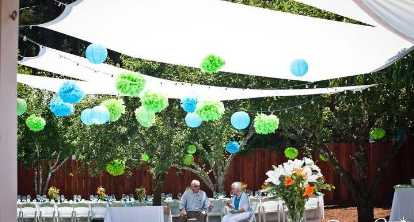 Diy Backyard Canopy Party Ideas Pinterest