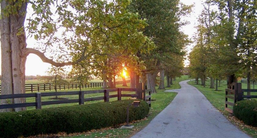 Driveway Entrance Fence Driveways Pinterest