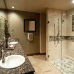 Elegant Walk Shower Designs Furniture Home Design Ideas