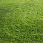 Grass Pattern Freeimages