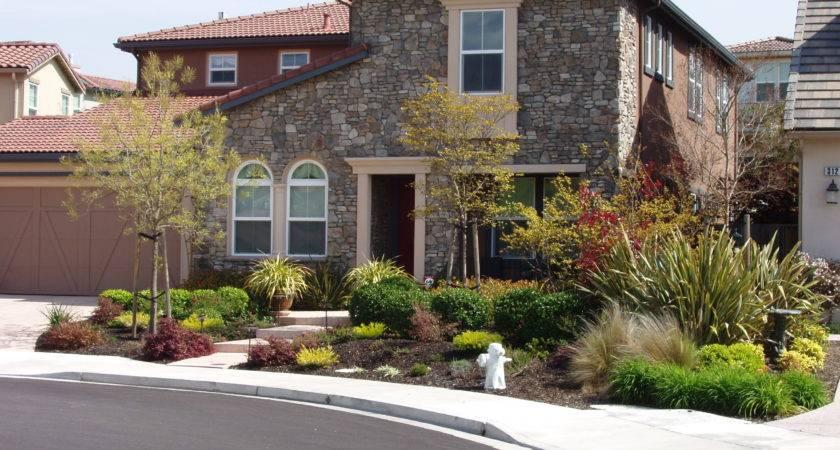 Homes Sale Alamo Creek Danville Real Estate
