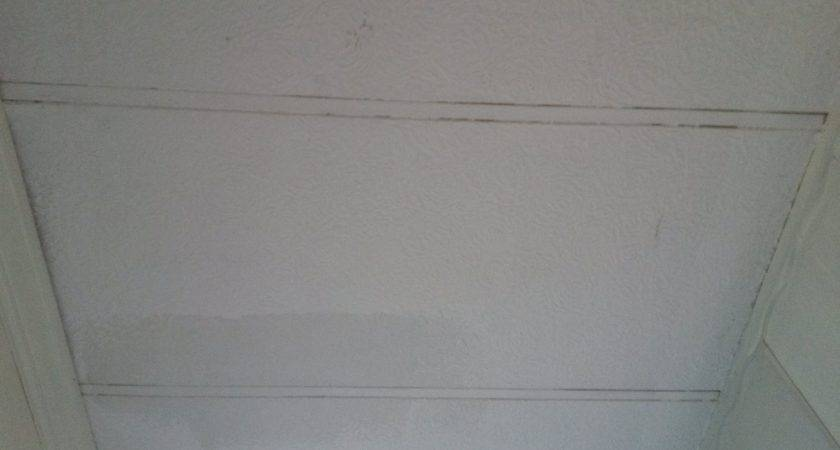 Hometalk Painting Mobile Home Ceiling Shabby Chic Look