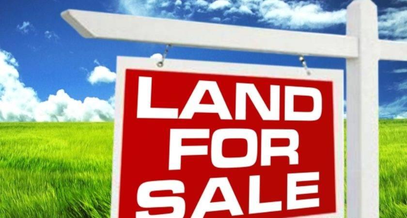 Industrial Land Sale Near Bucharest
