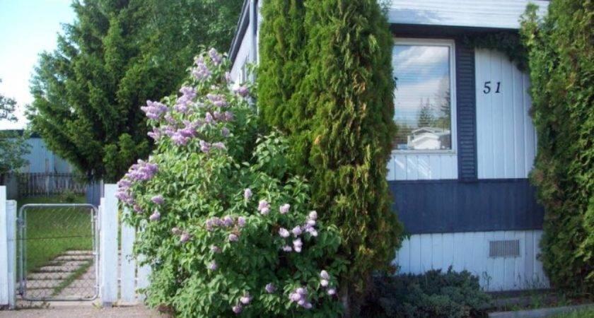 Inspiring Mobile Homes Sale Red Deer Kaf