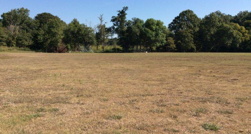 Isola Grenada Mississippi Taylor Auction Realty Inc
