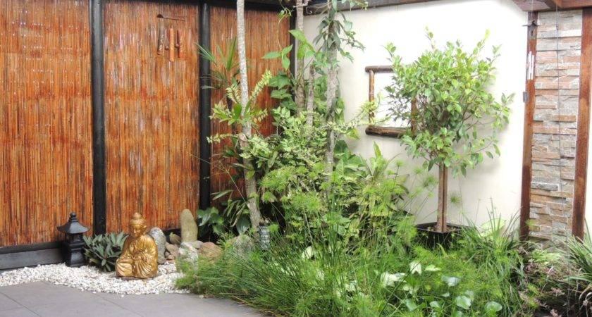 Kit Homes Australian Market Creative Backyard Patio Ideas