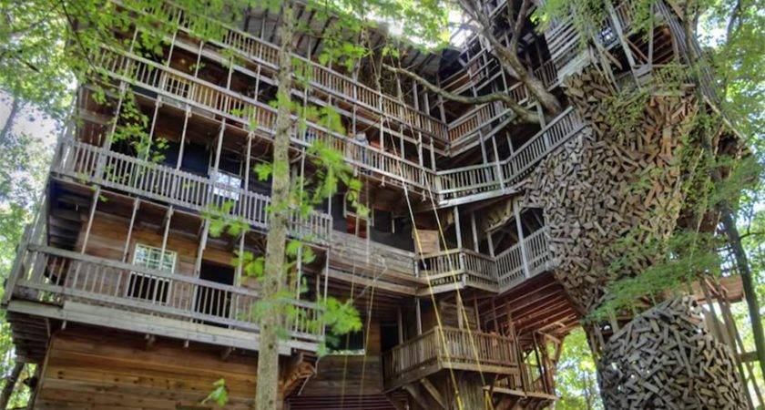Largest Treehouse Chive Take Tour Biggest House