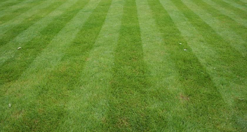 Lawn Care Landscaping Irrigation Denver