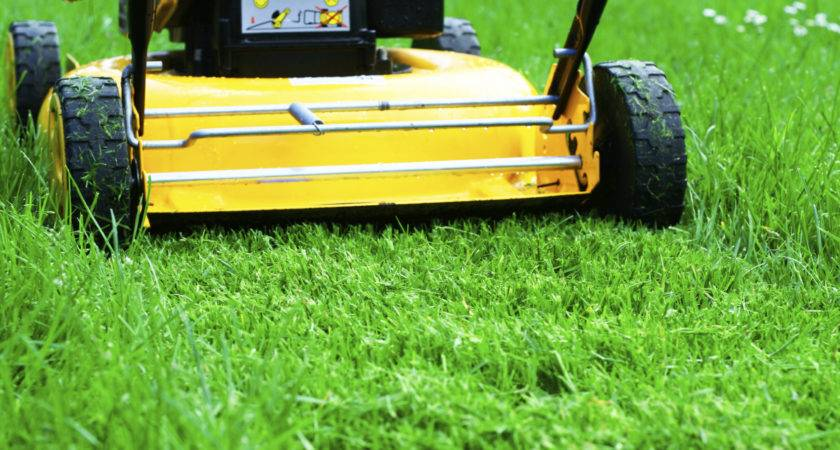Lawn Mowing Information Tips Lawns Properly
