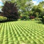 Lawn Mowing Patterns Stripes Zero