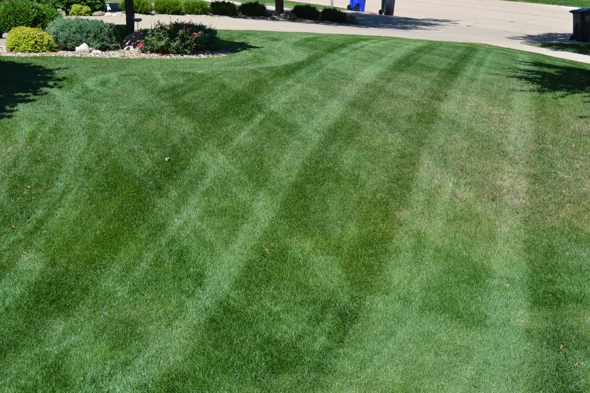 Lawn Mowing Photos Residential Commercial Turf