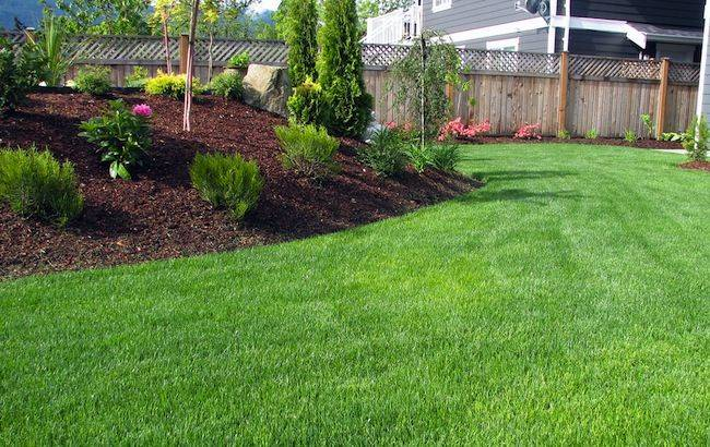 Lawn Mowing Tips Bob Vila