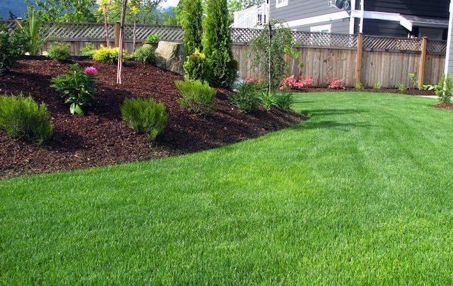 Lawn Mowing Tips Bob Vila