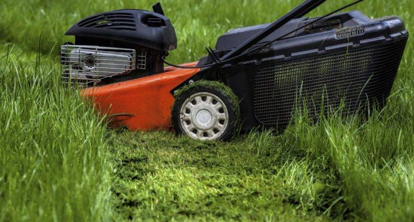 Lawn Mowing Tips Healthy Diy Landscaping Landscape
