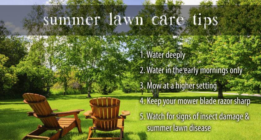 Lawn Weed Man Seasonal Care Tips Advice