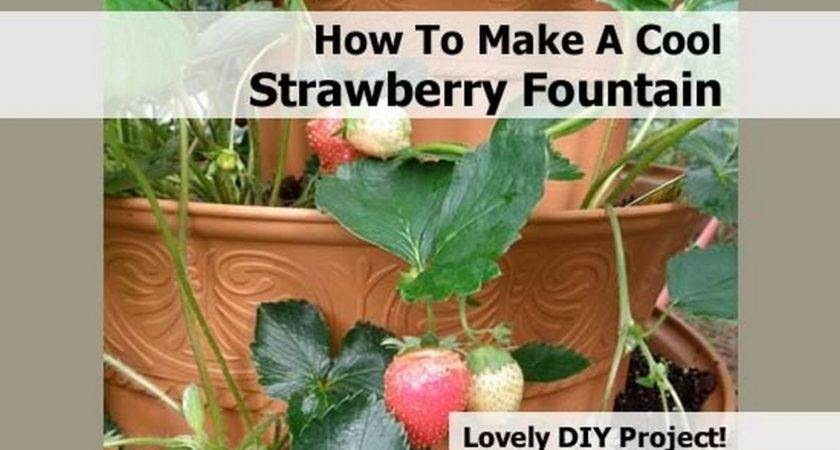 Make Cool Strawberry Fountain