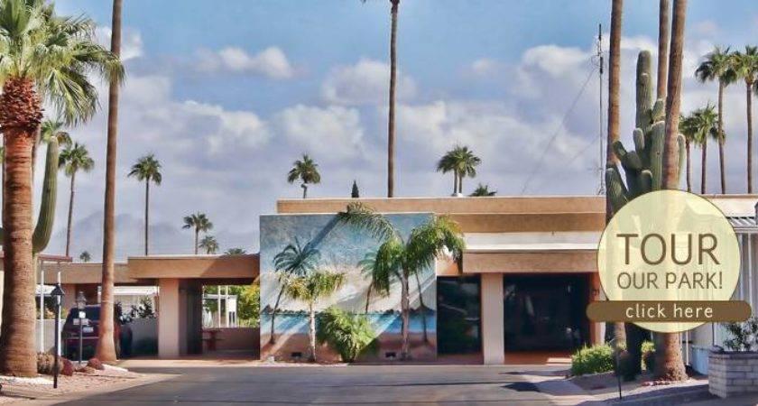 Mobile Home Arizona Palm Gardens
