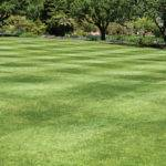 Mowing Patterns Make Perfect Turf
