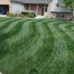 Mowing Stripes Lawn Curve Wave Pattern