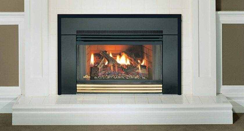 Napoleon Natural Vent Gas Fireplace Insert