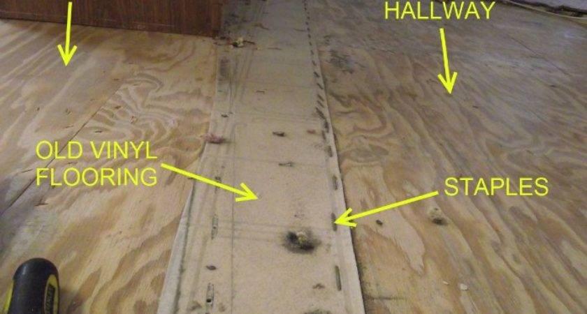 Prep Mobile Home Floors Laminate Flooring Thumbnail Apps