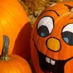 Pumpkin Easy Carve Designs Things