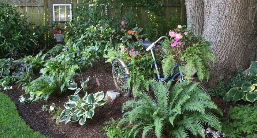 Shade Garden Ideas Pinterest