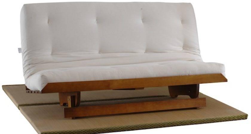 Sofa Beds Brisbane Zen Sofas