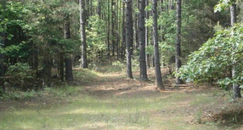 Van Vleet Mississippi Acreage Sale Landsofmississippi